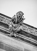 Gargoyle With Mandolin — Stock Photo