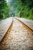 Locomotive Railway — Foto de Stock