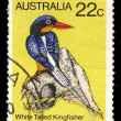Australia stamp shows image of a white-tailed kingfisher — Stock Photo #54770099