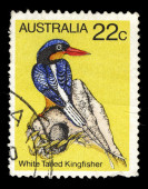 Australia stamp shows image of a white-tailed kingfisher — Foto Stock