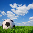 Soccer ball in grass — Stock Photo #71807615