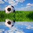 Soccer ball in grass — Stock Photo #71807621
