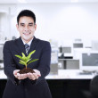 Businessman with small plant — Stockfoto