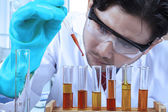 Scientist doing chemical test 1 — Stock Photo