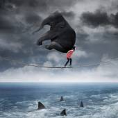 Woman carrying an elephant on the rope — Stock Photo