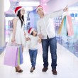Family in the malll with shopping bags — Stock Photo #55333461