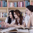 Beautiful students discussing with laptop — Stock Photo #69867381