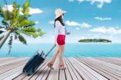 Traveler carrying suitcase at pier — Stock Photo