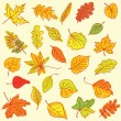 Freehand drawing autumn leaves items on a sheet of exercise book — Stock Vector #61083181