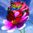 Beautiful Flower and butterfly against the sky — Stock Photo #62515567
