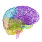 Creative concept of the human brain — Fotografia Stock