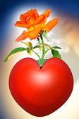 Rose in heart — Stock fotografie