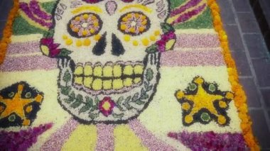 Carpet made of seeds and colorful sawdust — Stock Video