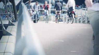 Turister passerar en bro i cykel — Stockvideo