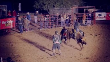 People watching cowboy riding horse — Stock Video