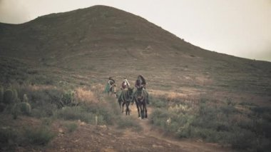 Group of horse riders — Stock Video