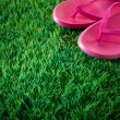 Flip flops on lush grass — Stock Photo
