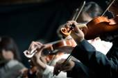 Symphony orchestra violinists performing — Stock Photo