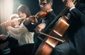 Classical music concert: symphony orchestra on stage — Foto de Stock