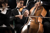 Symphony orchestra: cello player close-up — Stock Photo