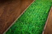 Artificial turf on hardwood floor — Stock Photo