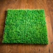 Green lush artificial grass — Stock Photo #54996203