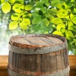Empty barrel with green leaves — Stock Photo #63018719
