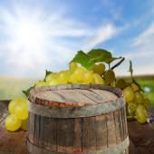Empty barrel with  grapes — Stock Photo