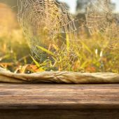 Empty table in the grass — Stock Photo