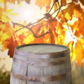 Empty barrel with autumn leaves — Stock Photo