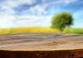 Empty table on the nature — Stock Photo