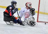 Bramkarz hokeja sanki i napastnik — Zdjęcie stockowe