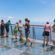 Tourists visiting  the cliffs of Gabo Girao at Madeira Island — Stock Photo #55782811