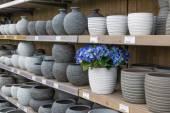 Garden shop with stone flowerpots — Stock Photo
