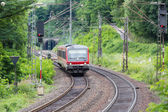 Train driving through woods near river Moselle in Germany — Stok fotoğraf