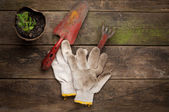 Gardening tools on old wooden background — Stock Photo