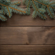 Blank scroll for text between fir twigs on dark — Stock Photo #57690365