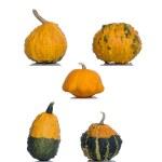 Orange pumpkin isolated over the white background — Stock Photo #65035965