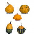 Orange pumpkin isolated over the white background — Stock Photo #65035965
