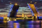 St. Petersburg-diluted Palace bridge — Stock Photo