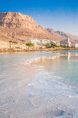 Magic sunrise on the Dead Sea — Stock Photo