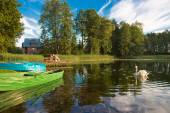 Boats and swan on lake — Stock Photo