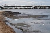 Pollution of the Baltic Sea. Sopot, Poland — Stock Photo