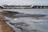 Pollution of the Baltic Sea. Sopot, Poland — Foto Stock