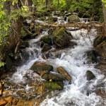 Cascade falls over mossy rocks — Stock Photo #72405631