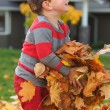 Boy playing with fall leaves — Stock Photo #56027441