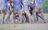 Rugby match. — Стоковое фото