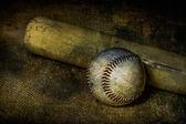 Baseball and Bat on Burlap — Stock Photo