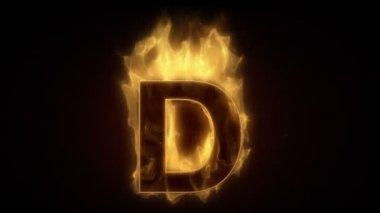 Fiery letter D burning — Stock Video