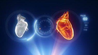 Menschliches Herz mit Pulslinie — Stockvideo